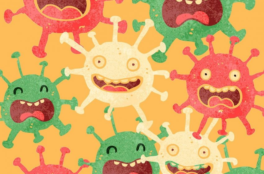 Wie die Theorie von den tödlichen Mikroben in Medizin und Gesellschaft die Macht ergriff